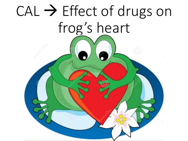 CAL  Effect of drugs on frog's heart