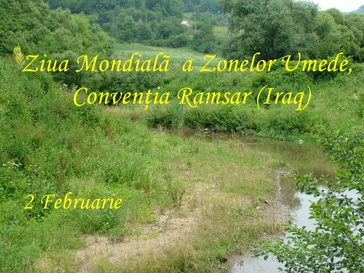 Calendar ecologic Slide 2