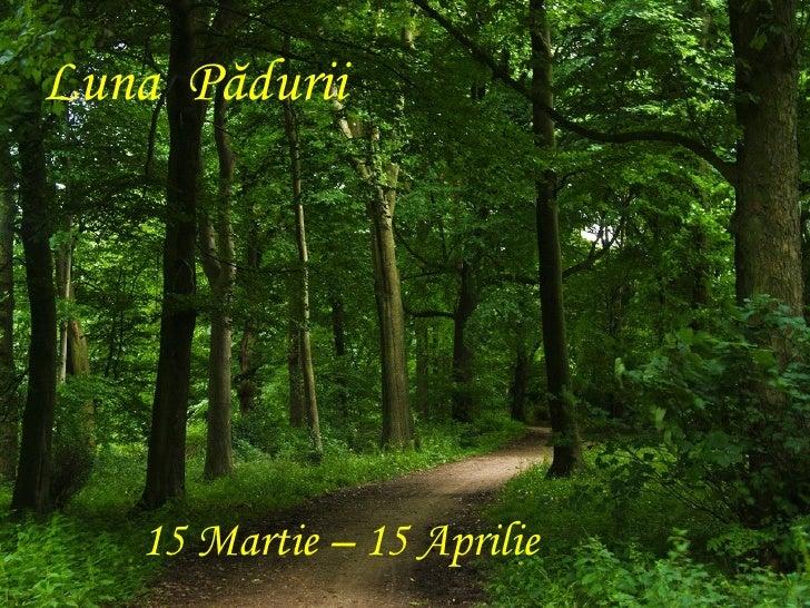 Calendar ecologic Slide 3