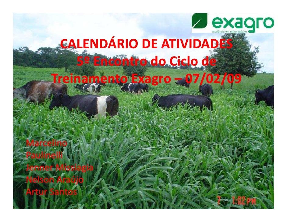 CALENDÁRIO DE ATIVIDADES          5º Encontro do Ciclo de      Treinamento Exagro – 07/02/09MarcelinoPaulinelliJenner Miss...
