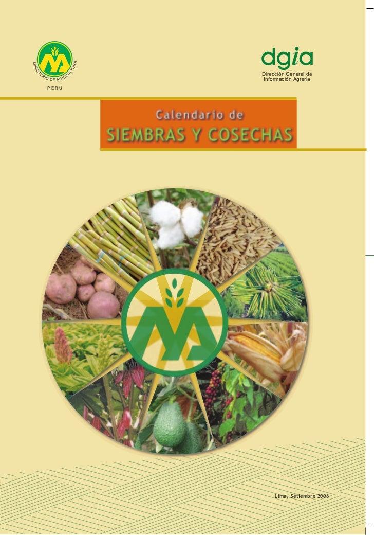 Dirección General de       Información AgrariaPERÚ                                   1            Lima, Setiembre 2008