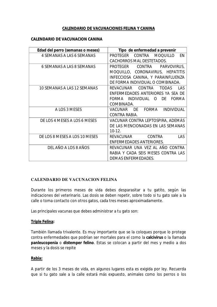 CALENDARIO DE VACUNACIONES FELINA Y CANINA  CALENDARIO DE VACUNACION CANINA     Edad del perro (semanas o meses)          ...