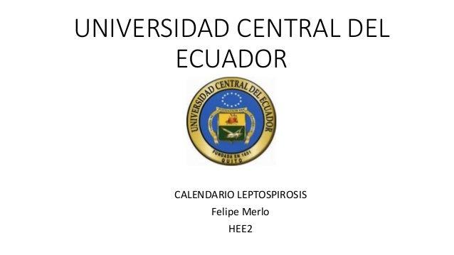 UNIVERSIDAD CENTRAL DEL ECUADOR CALENDARIO LEPTOSPIROSIS Felipe Merlo HEE2