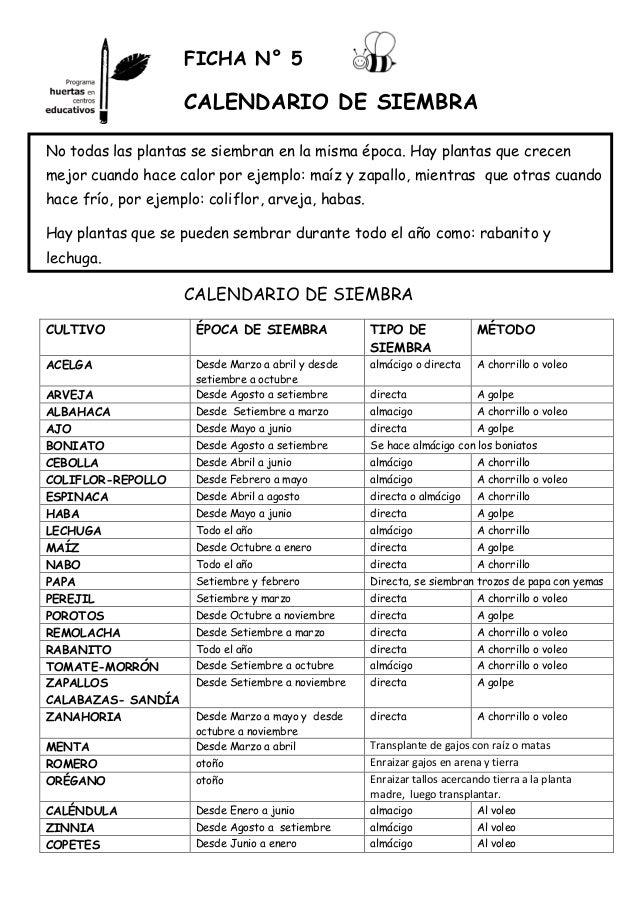 La Huertina De Toni Calendario De Siembra.Top 10 Punto Medio Noticias Epoca Siembra Acelgas