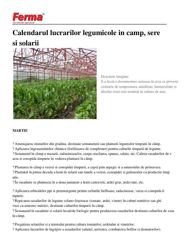 Calendarul lucrarilor legumicole in camp, seresi solarii                                                               Des...