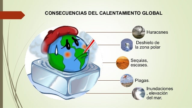 Calentamiento global causas pdf to excel