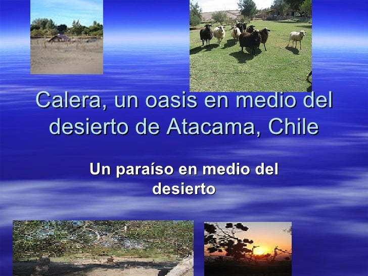 Calera, un oasis en medio del desierto de Atacama, Chile Un paraíso en medio del desierto