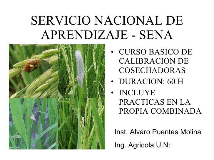 SERVICIO NACIONAL DE APRENDIZAJE - SENA <ul><li>CURSO BASICO DE CALIBRACION DE COSECHADORAS </li></ul><ul><li>DURACION: 60...