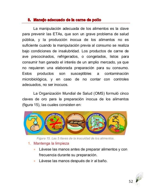 Calidad microbiol gica de la carne de pollo - Carne manipulacion de alimentos ...