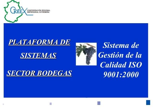 1 Sistema de Gestión de la Calidad ISO 9001:2000 PLATAFORMA DEPLATAFORMA DE SISTEMASSISTEMAS SECTOR BODEGASSECTOR BODEGAS
