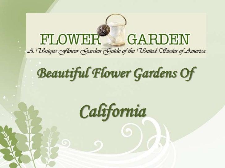 Beautiful Flower Gardens Of       California