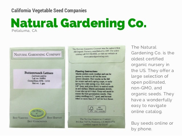 9 California Vegetable Seed Companies To Grow Your Garden With