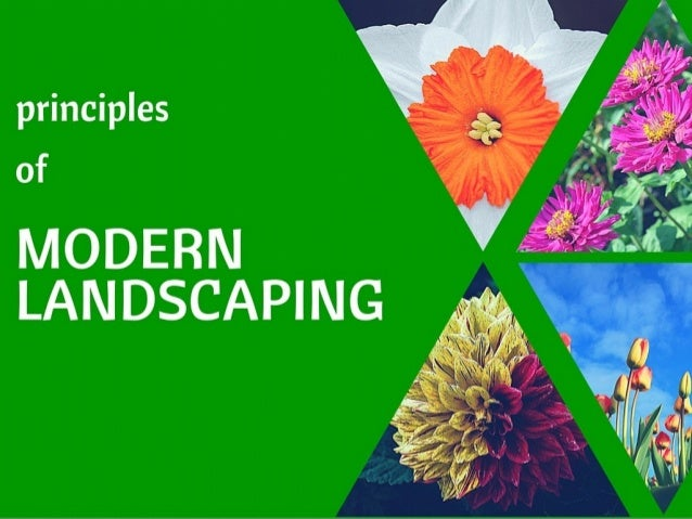 Principles of Modern Landscaping Design