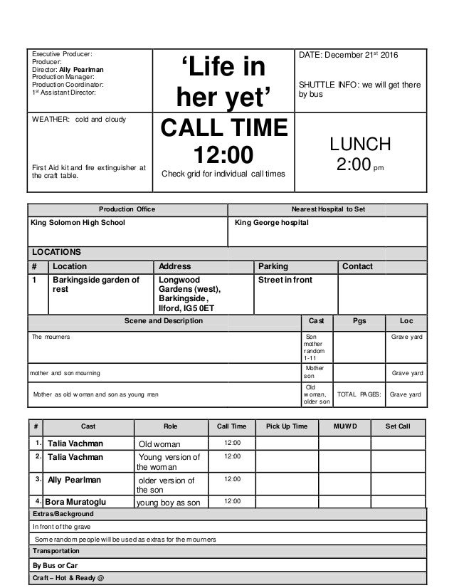 Call Sheet Template (2). Executive Producer: Producer: Director: Ally  Pearlman Production Manager: Production Coordinator: 1st ...