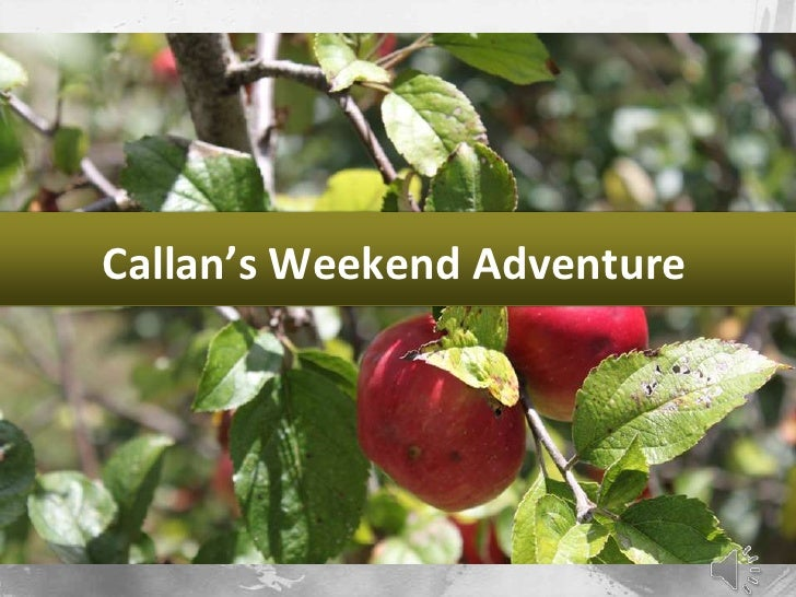 Callan's Weekend Adventure<br />