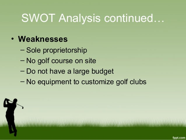Case Analysis Callaway Golf Company Essay - 361 Words