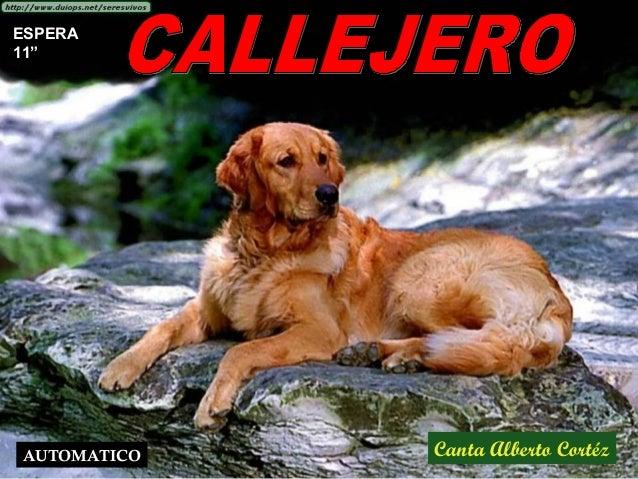 """Canta Alberto Cortéz ESPERA 11"""" AUTOMATICO"""