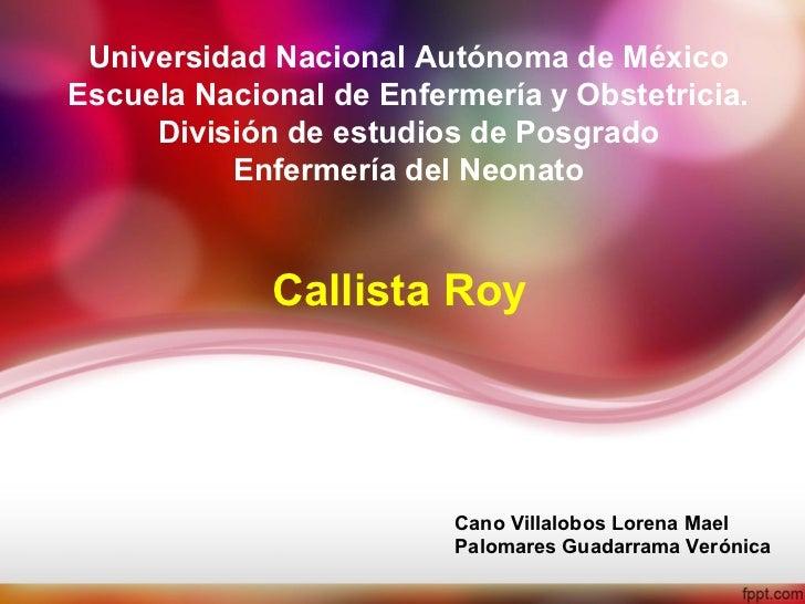 Universidad Nacional Autónoma de MéxicoEscuela Nacional de Enfermería y Obstetricia.     División de estudios de Posgrado ...