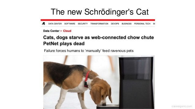 caseorganic.com The new Schrödinger's Cat Failure forces humans to 'manually' feed ravenous pets
