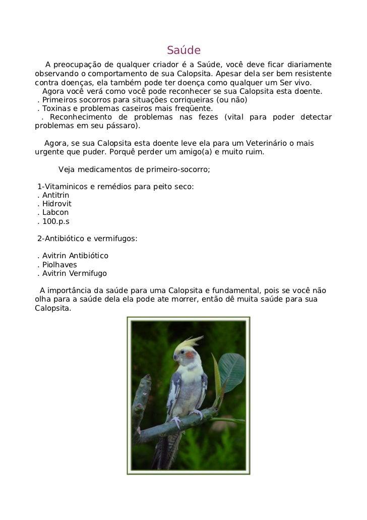 Reprodução         As Calopsitas são monoganicas, que quer dizer, aves que só têm um parceiros, começa a se reproduzir des...