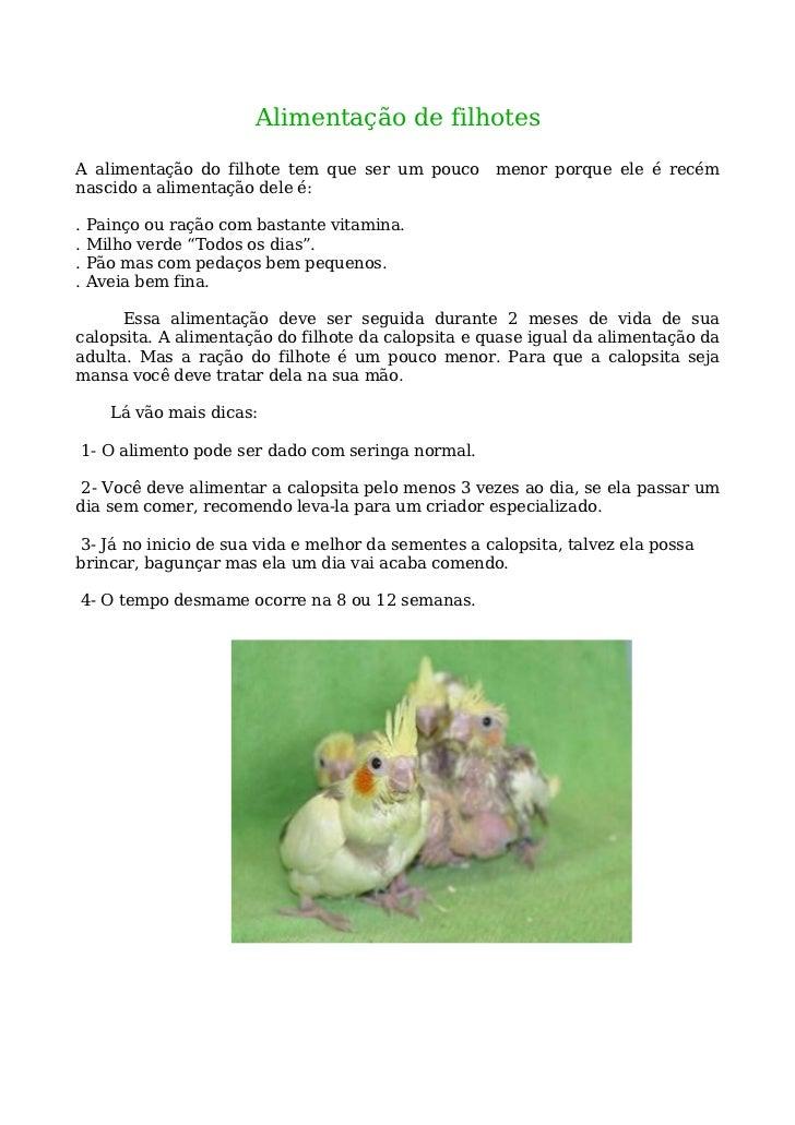 Alimentação de filhotes  A alimentação do filhote tem que ser um pouco menor porque ele é recém nascido a alimentação dele...