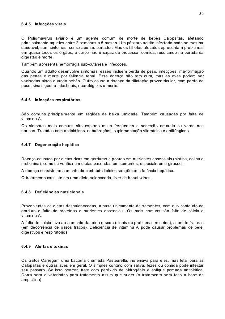 Calopsitas Mansas - www.calopsitabr.blogspot.com