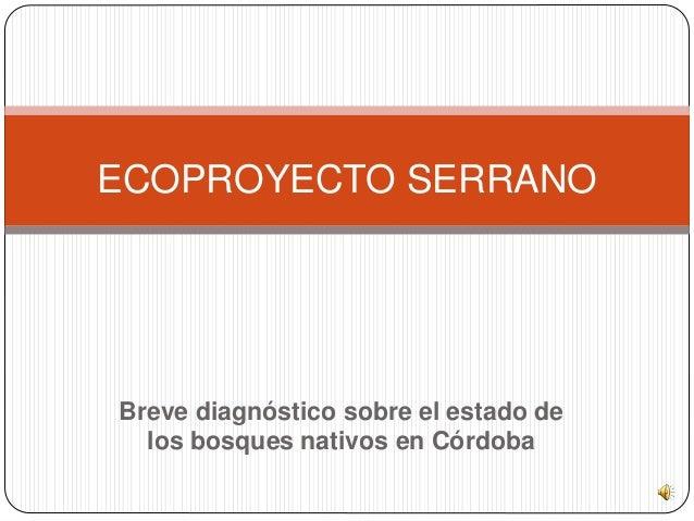 Breve diagnóstico sobre el estado de los bosques nativos en Córdoba ECOPROYECTO SERRANO