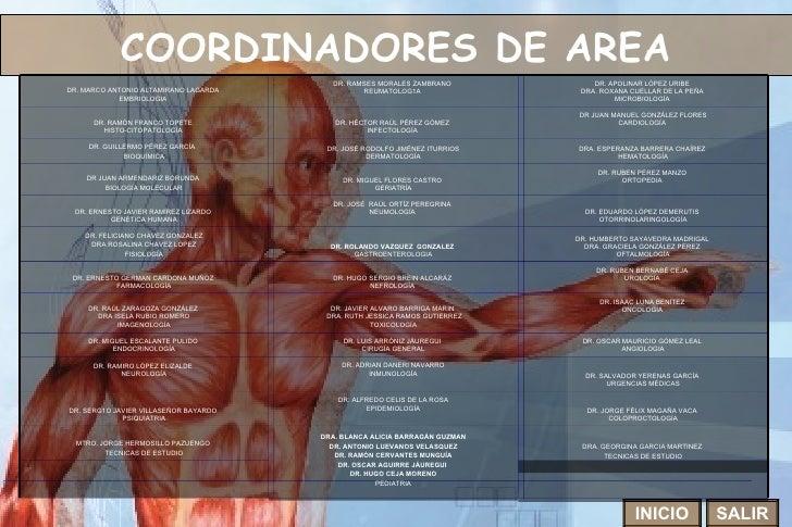 COORDINADORES DE AREA INICIO SALIR DR. SALVADOR YERENAS GARCÍA  URGENCIAS MÉDICAS DR. ADRIAN DANERI NAVARRO INMUNOLOGÍA DR...