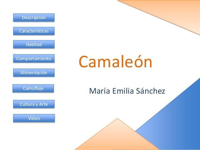 Camaleón María Emilia Sánchez Descripción Características Habitad Comportamiento Alimentación Camuflaje Cultura y Arte Vid...
