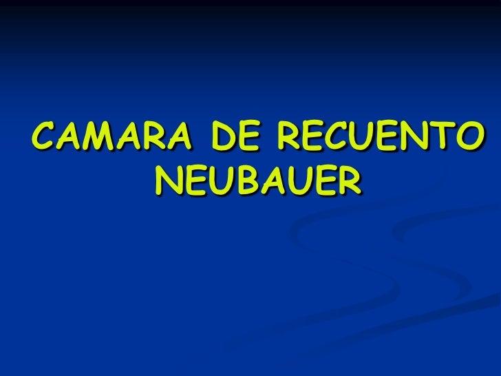 CAMARA DE RECUENTO    NEUBAUER