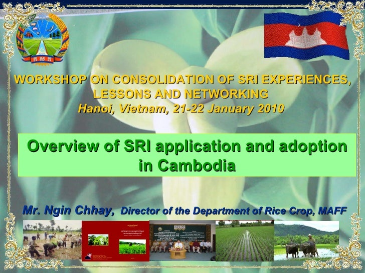 Overview of SRI application and adoption in Cambodia WORKSHOP ON CONSOLIDATION OF   SRI EXPERIENCES, LESSONS   AND NETWORK...