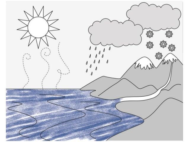 Cambio agua[1]