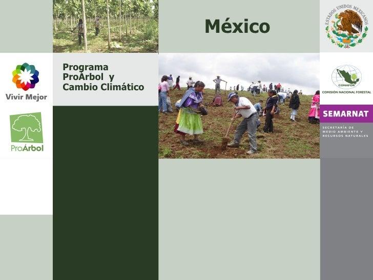 Programa ProÁrbol  y Cambio Climático México