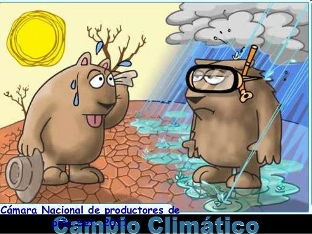 Cámara Nacional de productores de piña Set. 2011