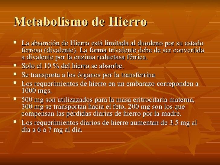 Metabolismo de Hierro <ul><li>La absorción de Hierro está limitada al duodeno por su estado ferroso (divalente). La forma ...
