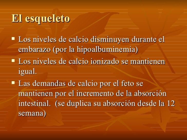 El esqueleto <ul><li>Los niveles de calcio disminuyen durante el embarazo (por la hipoalbuminemia) </li></ul><ul><li>Los n...