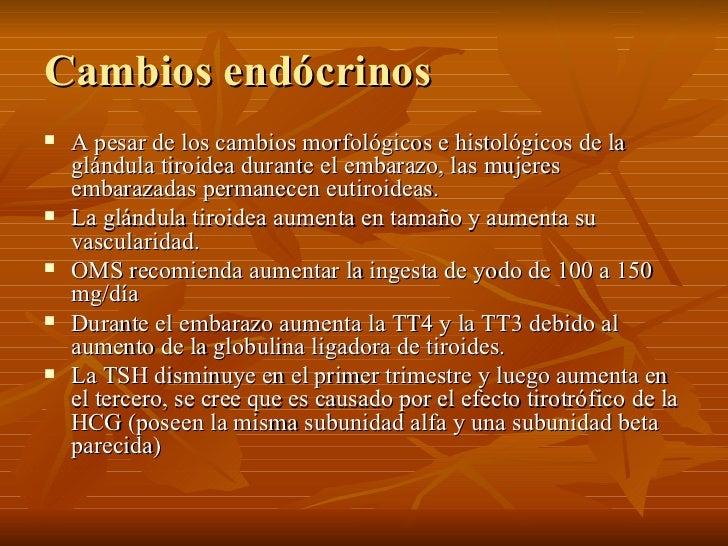 Cambios endócrinos <ul><li>A pesar de los cambios morfológicos e histológicos de la glándula tiroidea durante el embarazo,...