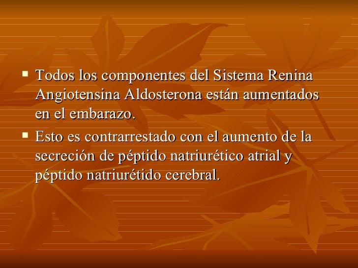 <ul><li>Todos los componentes del Sistema Renina Angiotensina Aldosterona están aumentados en el embarazo.  </li></ul><ul>...