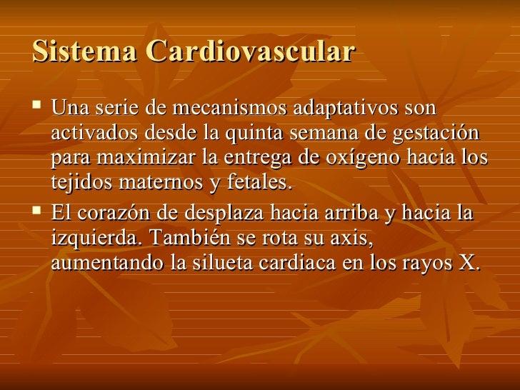 Sistema Cardiovascular <ul><li>Una serie de mecanismos adaptativos son activados desde la quinta semana de gestación para ...