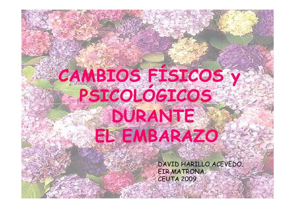 CAMBIOS FÍSICOS y  PSICOLÓGICOS      DURANTE    EL EMBARAZO         DAVID HARILLO ACEVEDO.         EIR MATRONA.         CE...