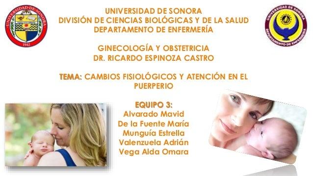 UNIVERSIDAD DE SONORA DIVISIÓN DE CIENCIAS BIOLÓGICAS Y DE LA SALUD DEPARTAMENTO DE ENFERMERÍA GINECOLOGÍA Y OBSTETRICIA D...
