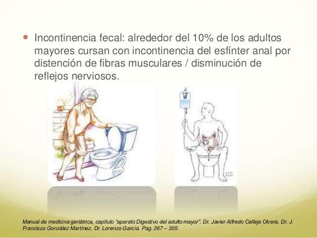 Cambios anatomofuncionales del Aparato Digestivo en el
