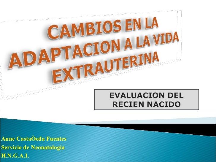 Anne Castañeda Fuentes Servicio de Neonatología H.N.G.A.I.