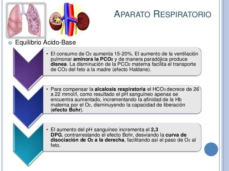 APARATO RESPIRATORIO   Equilibrio Ácido-Base              • El consumo de O2 aumenta 15-20%. El aumento de la ventilación...