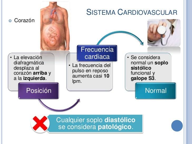 SISTEMA CARDIOVASCULAR   Corazón                              Frecuencia• La elevación                 cardiaca        • ...