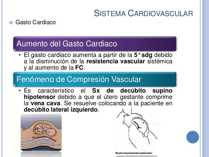 SISTEMA CARDIOVASCULAR   Gasto Cardiaco    Aumento del Gasto Cardiaco     • El gasto cardiaco aumenta a partir de la 5° s...