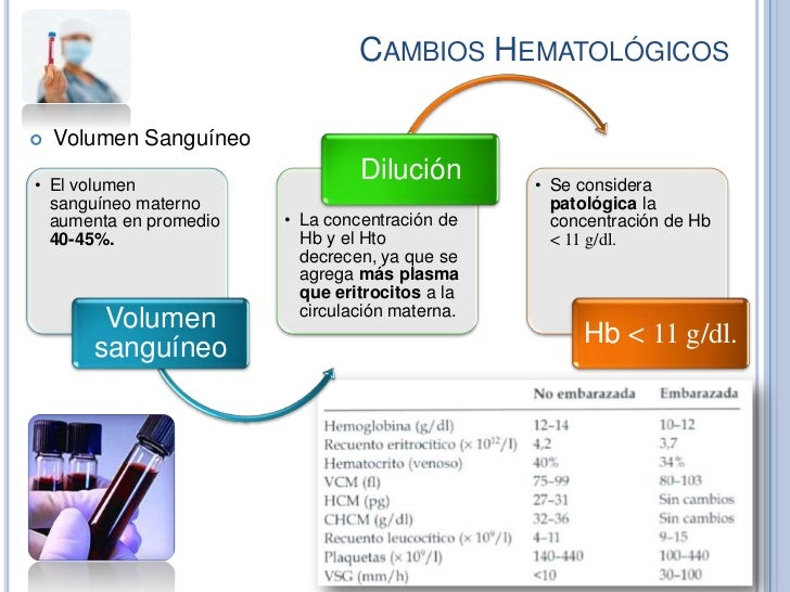 CAMBIOS HEMATOLÓGICOS   Volumen Sanguíneo• El volumen                                 Dilución        • Se considera  san...