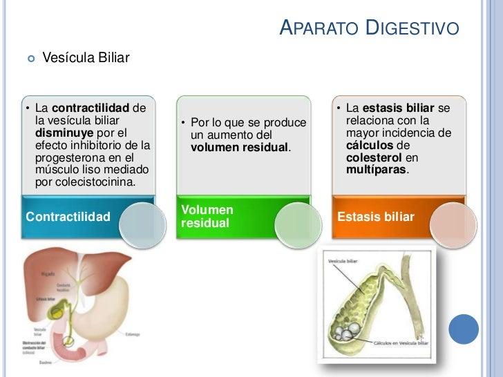 APARATO DIGESTIVO   Vesícula Biliar• La contractilidad de                                 • La estasis biliar se  la vesí...