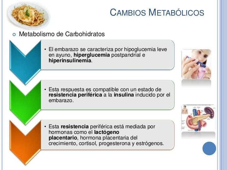 CAMBIOS METABÓLICOS   Metabolismo de Carbohidratos            • El embarazo se caracteriza por hipoglucemia leve         ...