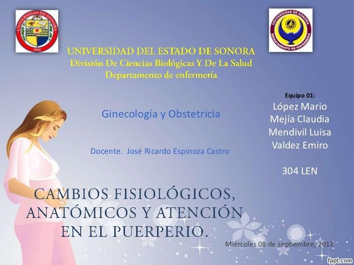 Equipo 01:                                               López Mario  Ginecología y Obstetricia                    Mejía C...
